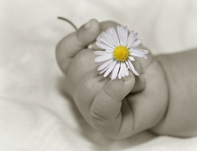 Babys fotografieren Tipps